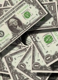 dollar-currency-money-us-dollar-47344